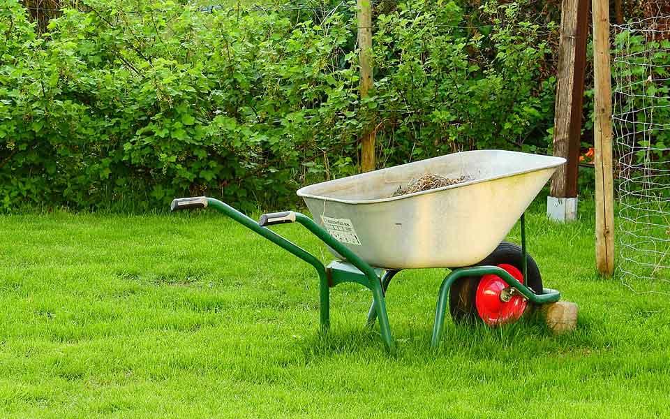 Gartenpflege & Zubehör
